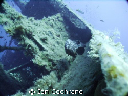 A grouper on the edge of the Zenobia. Using a wide angle ... by Ian Cochrane 